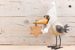 Winter funny bird. Funny bird in warm hat with ginger cookie. Empty space for text Stock Images