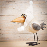 Winter funny bird. Funny bird in warm hat on wooden background. Autumn winter postcard Royalty Free Stock Images