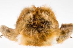 Winter fur hat. Stock Photos