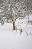 Winter garden. With a lot of snow stock image
