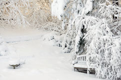 Winter Garden. Photograph of snow covered garden including bird bath and garden bench Royalty Free Stock Images