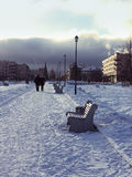 winter garden with benches. Christmas. royalty free stock photography