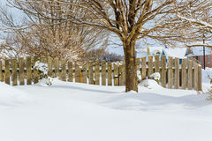 Winter Garden Gate royalty free stock photo