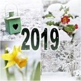 2019 winter garden stock image