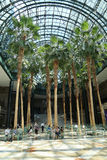 Winter Garden in World Financial Center located in Lower Manhattan. NEW YORK - AUGUST 6, 2013: Winter Garden in World Financial Center located in Lower Manhattan royalty free stock images