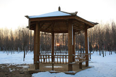 Winter gazebo Royalty Free Stock Images