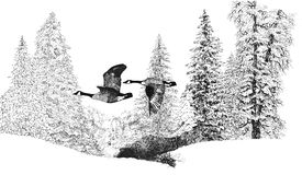 Winter Geese stock illustration