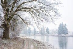 Winter gefrorene Landschaft Lizenzfreies Stockbild