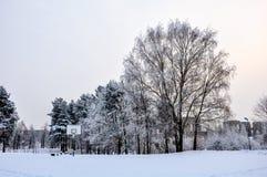 Winter-Gericht Stockbild