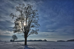 Winter in Germany Royalty Free Stock Image