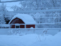 Winter gewonnen Stockbilder