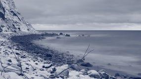 Winter gibt nicht auf lizenzfreie stockfotografie