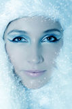 Winter Girl with beautiful make up Stock Image