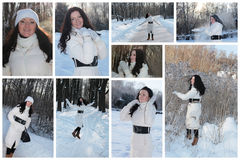 Winter girl collage. Beautiful young woman in winter forest Royalty Free Stock Photos