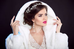 Winter Girl in Luxury fashion Fur Coat. Hairstyle. Makeup. Beaut Stock Photos