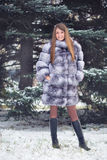Winter Girl in Luxury Fur Coat. On the background of fir trees Royalty Free Stock Images