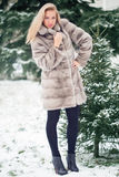 Winter Girl in Luxury Fur Coat. On the background of fir trees Royalty Free Stock Photography