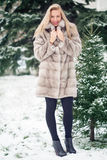 Winter Girl in Luxury Fur Coat. On the background of fir trees Stock Image