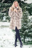 Winter Girl in Luxury Fur Coat Royalty Free Stock Images