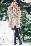 Winter Girl in Luxury Fur Coat Stock Photography