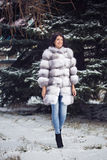 Winter Girl in Luxury Fur Coat. On the background of fir trees Stock Photos