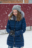 Winter Royalty Free Stock Images