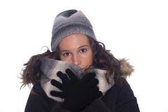 Winter. Stock Photography