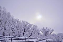 Winter-Glück Lizenzfreie Stockbilder