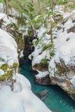 A Winter in Glacier National Park Stock Photos