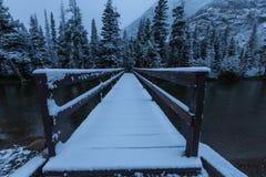 Winter in Glacier Park Stock Image