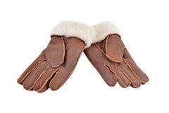 Winter glove Royalty Free Stock Photo