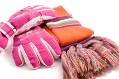 Winter gloves and muffler Stock Image