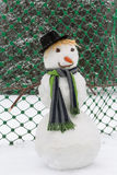 Winter goalkeeper Royalty Free Stock Photo