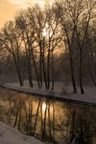 Winter in Gold. The trees on the coast of the river in winter Stock Photo