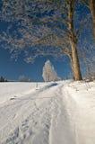 Winter-Grüße von der schneebedeckten Landschaft Lizenzfreie Stockfotos