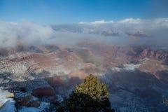 Winter at Grand Canyon South Rim Stock Photography