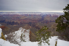 Winter in Grand Canyon, Yavapai Point, AZ Stock Images