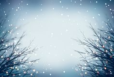 Winter grass blue blurred background. Gold sparkle on frosted grass. Misty frosty blue matte background. Glitter texture. Stock Images