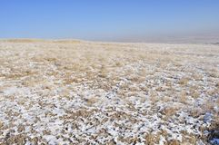 Winter grassland in inner mongolia Royalty Free Stock Photo