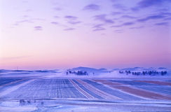 Winter grassland sunrise Royalty Free Stock Image