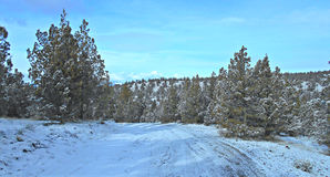 Winter in the Grassland. View along FR 57 in the Crooked River National Grassland - near Terrebonne, OR royalty free stock image