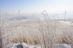 Winter grassland with wind Turbines Royalty Free Stock Photos