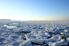 Winter on the Great Lakes. Broken ice and snow as far as the eye can see on Lake Ontario Royalty Free Stock Image