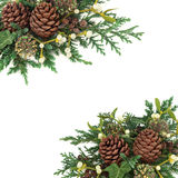 Winter Greenery Arrangement. Winter background border of cedar cypress and juniper leaf sprigs with mistletoe, ivy and pine cones  on white Stock Photos