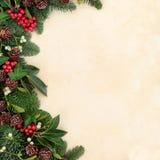 Winter Greenery Border Stock Photography