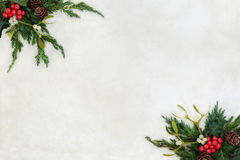 Winter Greenery Border with Fir Mistletoe and Holly Royalty Free Stock Photos