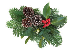 Winter Greenery. Christmas and winter greenery with holly, ivy, mistletoe, pine cones and fir over white background Stock Image
