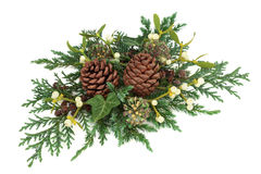 Winter Greenery Decoration Royalty Free Stock Images