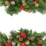 Winter Greenery and Holly Border Stock Images