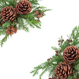 Winter Greenery and Pine Cone Border Stock Images